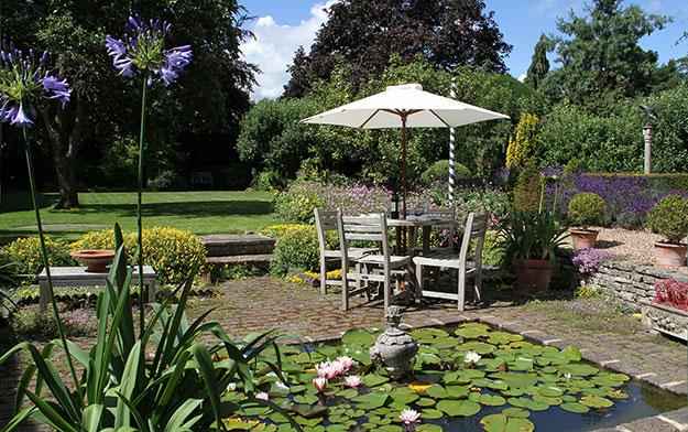 stefanbuczacki-garden-advice